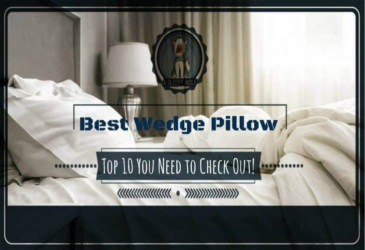 Best Wedge Pillow For Acid Reflux Top 10 Ratings And