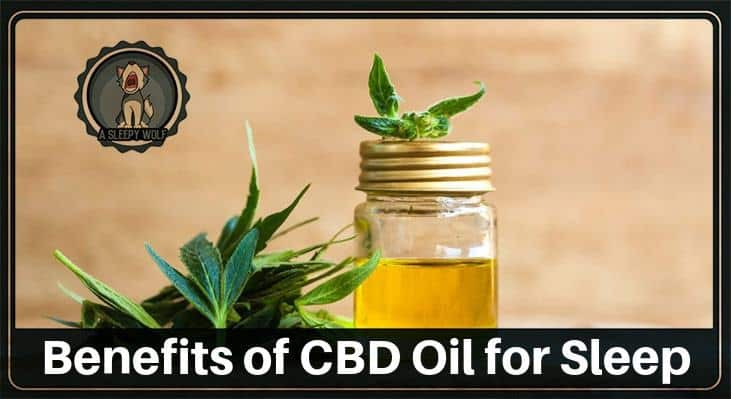 Benefits of CBD Oil for Sleep