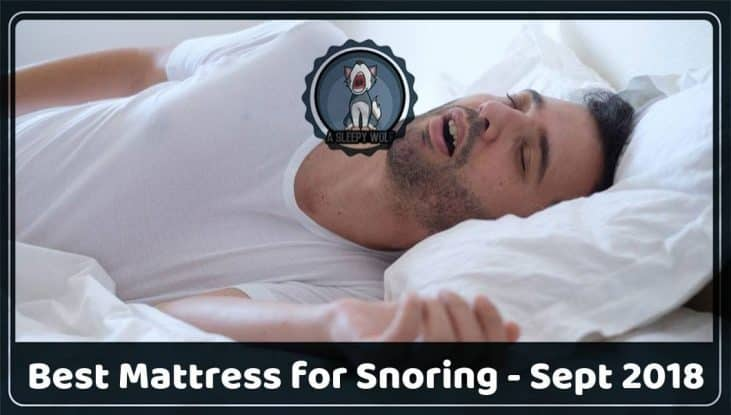 Best Mattress For Snoring Top 5 Help Ease Your Rest Now