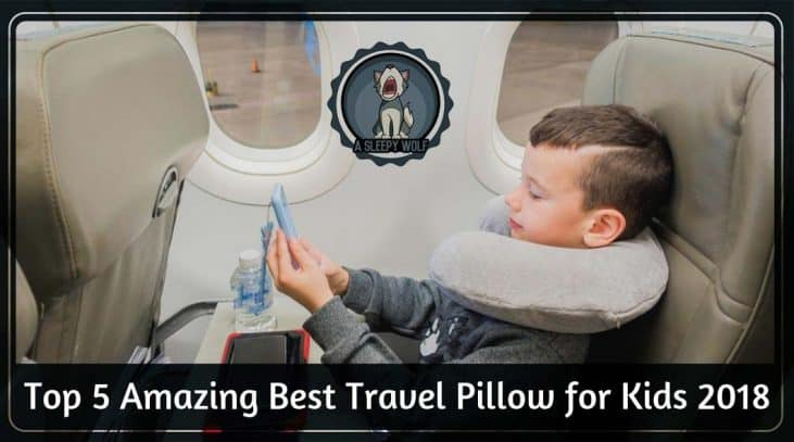 Best Travel Pillow for Kids 2018