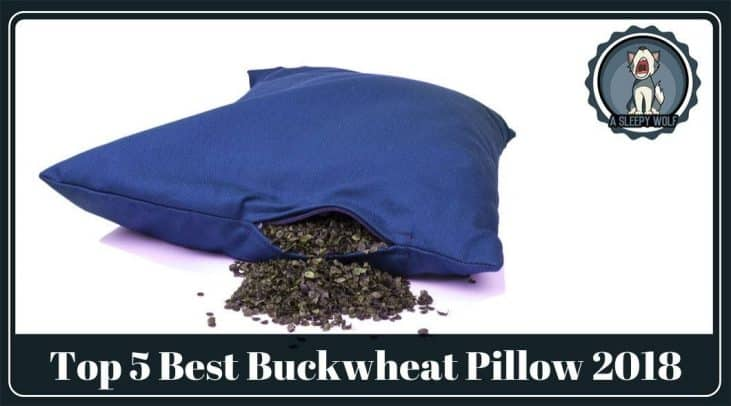 Best Buckwheat Pillow Top 5 Firm Pillow Reviews Updated