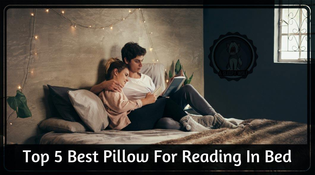 Best Reading Pillows 2019 Top 5 Products To Be Comfy And