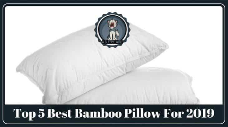 Best Bamboo Pillow Updated 2019