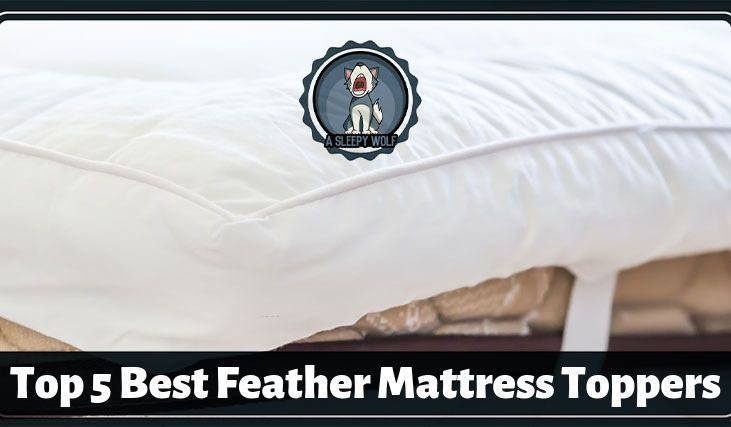 Best Feather Mattress Topper Of 2019 Top 5 Feather